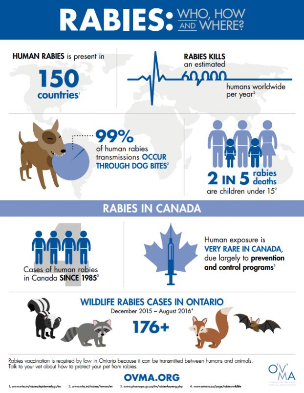 OVMA Rabies Infographic 1