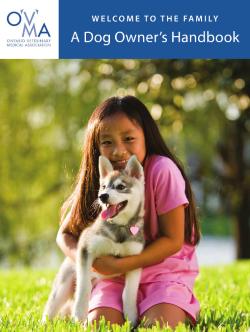 Dog Owner's Handbook