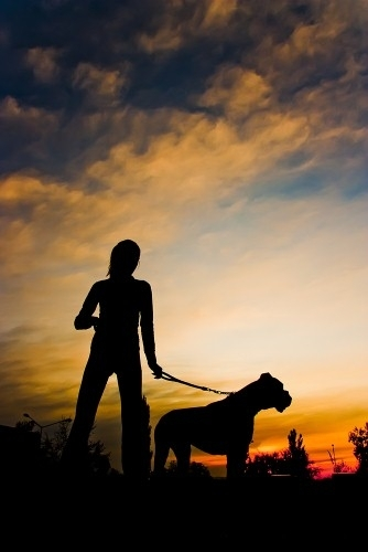 woman walking a dog at dusk