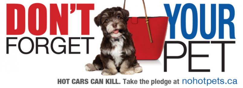 No Hot Pets Campaign, Ontario SPCA